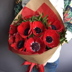 Букет 9 красных анемонов в крафте R999