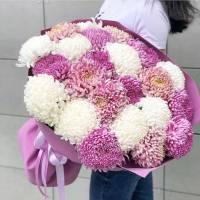 Букет 31 крупная хризантема микс с упаковкой R343